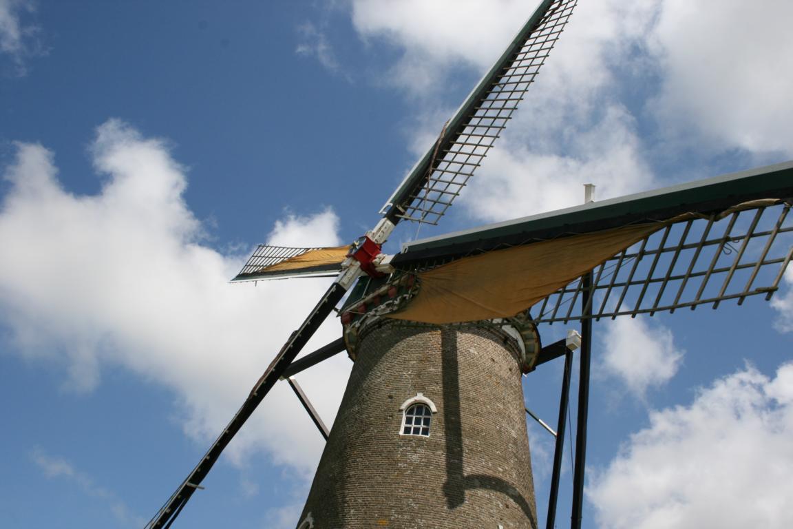 Nieuwvliet - Windmühle