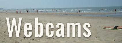 Live vom Strand