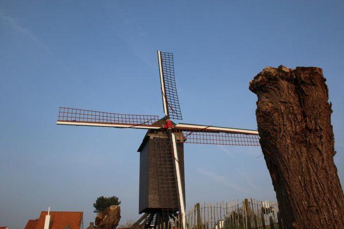 Windmühle Knokke